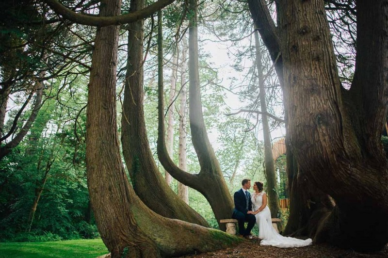 Bride and groom beneath large trees in the grounds of Fairyhill